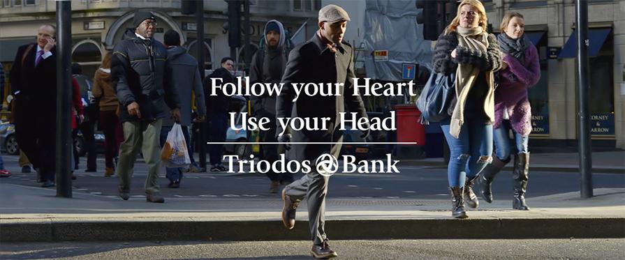triodos_bank_nederland_rafael_de_amorim_videographer